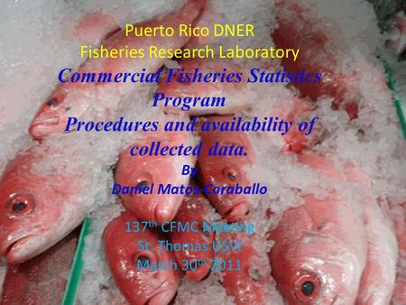 Puerto Rico DNER Fisheries Research Laboratory Commercial Fisheries Statistics Program Procedures and availability of collected data. By Daniel Matos-Caraballo.