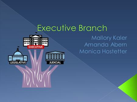  The branch includes › Chief of Executive › Vice President › And any other advisers.