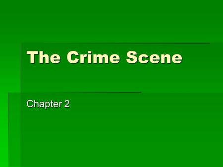 The Crime Scene Chapter 2.