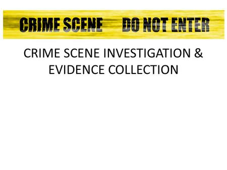 Basic Stages for a Crime Scene Investigation — Possible Homicide