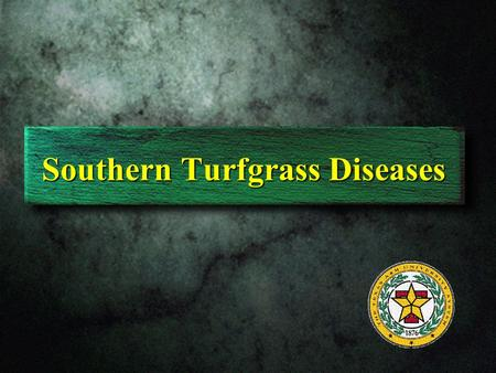 Southern Turfgrass Diseases. Bermudagrass leaf spot.