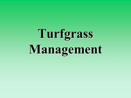 Turfgrass Management. What is turfgrass? Turf -- the plants in a ground cover and the soil in which the roots grow Turfgrass -- a collection of grass.