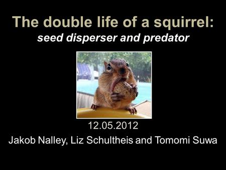 The double life of a squirrel: seed disperser and predator 12.05.2012 Jakob Nalley, Liz Schultheis and Tomomi Suwa.