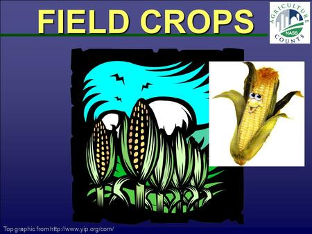 FIELD CROPS Top graphic from