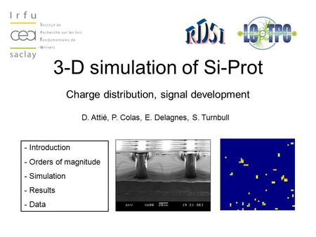 3-D simulation of Si-Prot Charge distribution, signal development D. Attié, P. Colas, E. Delagnes, S. Turnbull - Introduction - Orders of magnitude - Simulation.