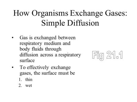 How Organisms Exchange Gases: Simple Diffusion Gas is exchanged between respiratory medium and body fluids through diffusion across a respiratory <strong>surface</strong>.