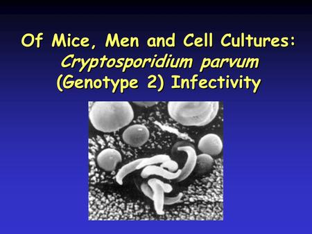 Of Mice, Men and Cell Cultures: Cryptosporidium parvum (Genotype 2) Infectivity.