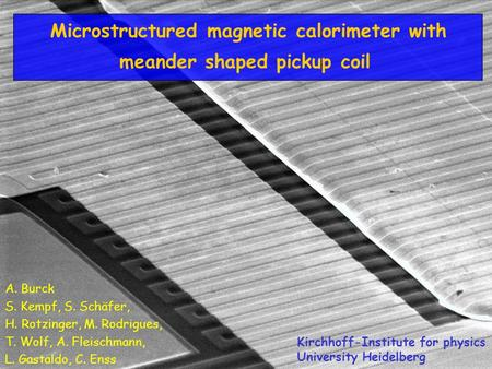 LTD12, Paris Microstructured magnetic calorimeter with meander shaped pickup coil A. Burck S. Kempf, S. Schäfer, H. Rotzinger, M. Rodrigues, T. Wolf, A.