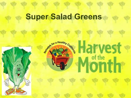Super Salad Greens. Salad greens are a leaf that we eat. Salad greens are also called lettuce. Bolting is when a plant sends up a flower stalk and blooms.