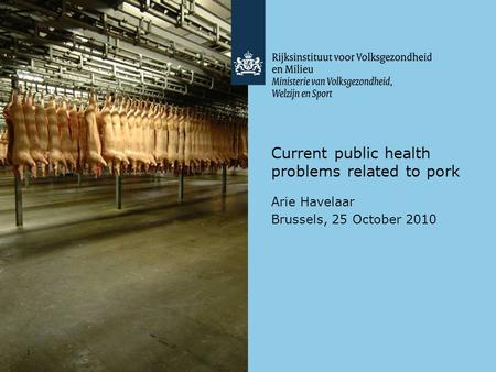 1 Current public health problems related to pork Arie Havelaar Brussels, 25 October 2010.