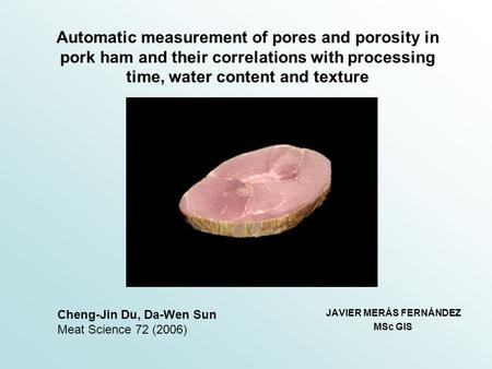 Automatic measurement of pores and porosity in pork ham and their correlations with processing time, water content and texture JAVIER MERÁS FERNÁNDEZ MSc.