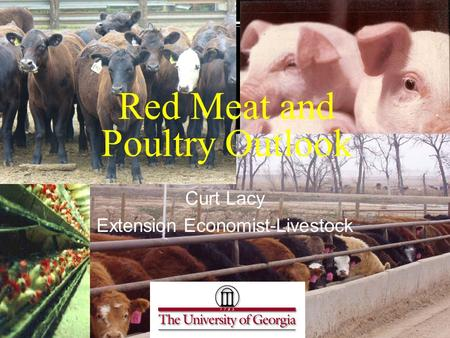 Red Meat and Poultry Outlook Curt Lacy Extension Economist-Livestock.
