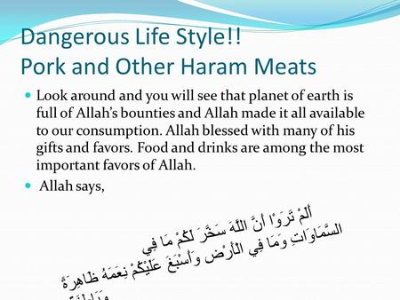 Dangerous Life Style!! Pork and Other Haram Meats