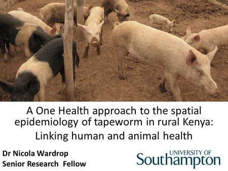 A One Health approach to the spatial epidemiology of tapeworm in rural Kenya: Linking human and animal health Dr Nicola Wardrop Senior Research Fellow.