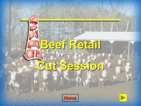 Beef Retail Cut Session