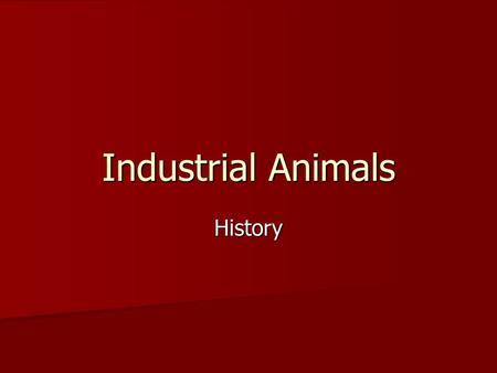 Industrial Animals History. Unit Map Set Up (warm-up) Unit Name: Industrial Animals Unit Name: Industrial Animals Unit Essential Question: What are industrial.