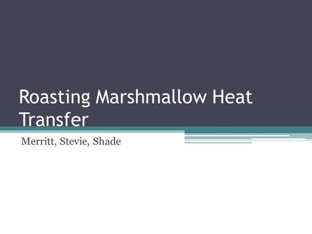 Roasting Marshmallow Heat Transfer Merritt, Stevie, Shade.
