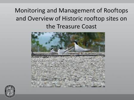 Monitoring and Management of Rooftops and Overview of Historic rooftop sites on the Treasure Coast.