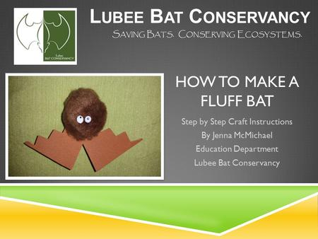 HOW TO MAKE A FLUFF BAT Step by Step Craft Instructions By Jenna McMichael Education Department Lubee Bat Conservancy L UBEE B AT C ONSERVANCY S AVING.