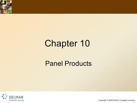 Copyright © 2009 Delmar, Cengage Learning Chapter 10 Panel Products.
