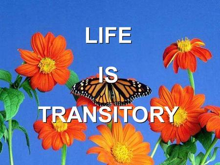 LIFE IS TRANSITORY.