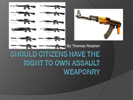 By Thomas Reamer. My Opinion Citizens should not have the right to purchase and own assault weapons. With the exception of soldiers serving in our military.