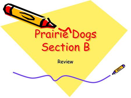 Prairie Dogs Section B Review What is the process of breaking down parent material called? A. Inorganic B. organic C. weathering D. cover crop.