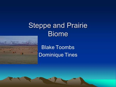 Steppe and Prairie Biome Blake Toombs Dominique Tines.