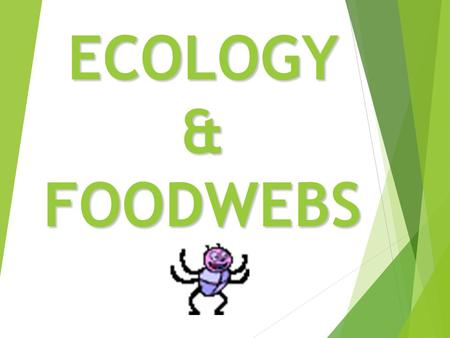 ECOLOGY & FOODWEBS.