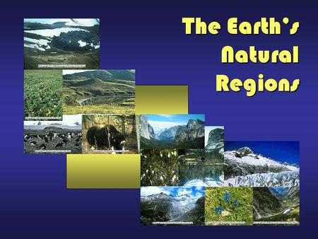 The Earth's Natural Regions. EARTH'S NATURAL REGIONS The Earth supports a wide diversity of biomes: tundra, taiga, temperate forest, grasslands, savanna,