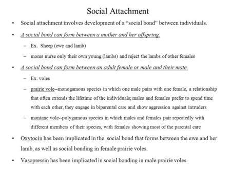 maternal behaviour on the development of