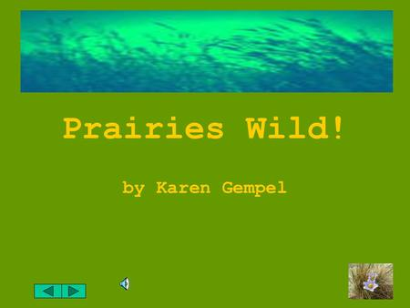 "Prairies Wild! by Karen Gempel What does the word ""prairie"" mean to you? Do you think of a big empty field?"