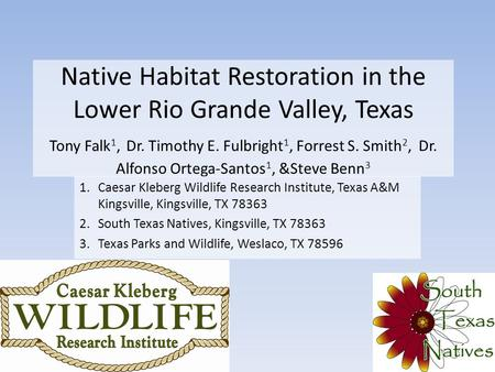 Native Habitat Restoration in the Lower Rio Grande Valley, Texas Tony Falk 1, Dr. Timothy E. Fulbright 1, Forrest S. Smith 2, Dr. Alfonso Ortega-Santos.