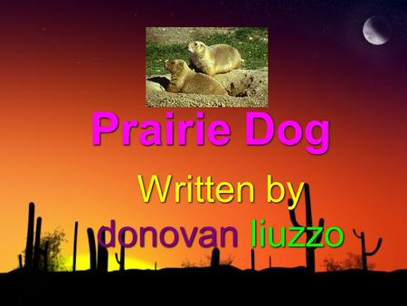 Prairie Dog Written by donovan liuzzo. protection The prairie dog protects itself by sending a bark. then they will dive into their burrow and wait for.