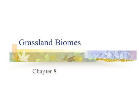 Grassland Biomes Chapter 8.