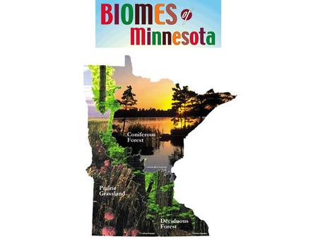 Scientific and Natural Areas found in Minnesota major biomes.