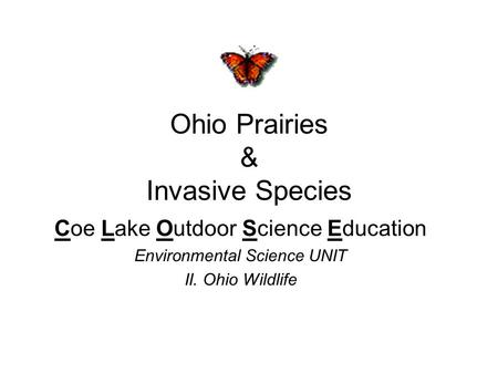 Ohio Prairies & Invasive Species Coe Lake Outdoor Science Education Environmental Science UNIT II. Ohio Wildlife.
