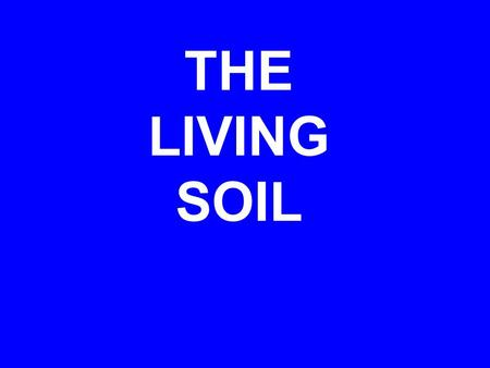 THE LIVING SOIL. Functions of soil Support plant growth Regulate water flow Absorb and transform pollutants Habitat for living organisms  Soil Quality.