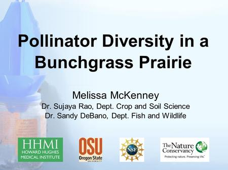 Pollinator Diversity in a Bunchgrass Prairie Melissa McKenney Dr. Sujaya Rao, Dept. Crop and Soil Science Dr. Sandy DeBano, Dept. Fish and Wildlife.