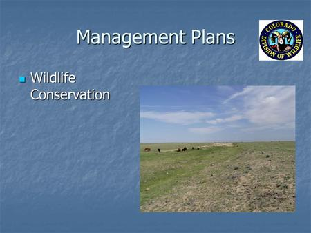 Management Plans Wildlife Conservation Wildlife Conservation.