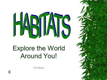 Explore the World Around You! Mrs. Kirkpatrick What is a Habitat?  A habitat is a place where a particular animal or plant species lives.  An artificial.