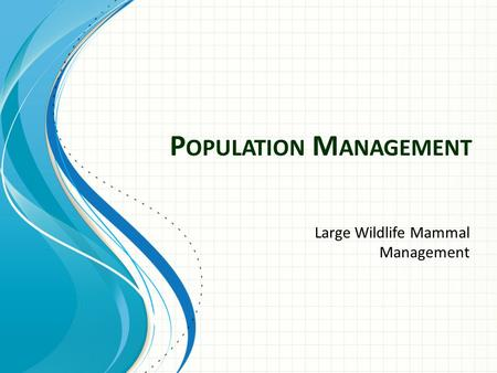 P OPULATION M ANAGEMENT Large Wildlife Mammal Management.