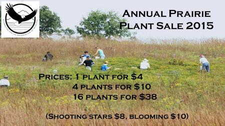Annual Praire Plant Sale 2012 Annual Prairie Plant Sale 2015 Prices: 1 plant for $4 4 plants for $10 16 plants for $38 (Shooting stars $8, blooming $10)
