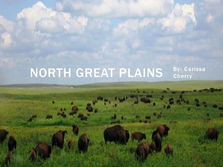 By: Carissa Cherry NORTH GREAT PLAINS.  The Northern Great Plains span over 180 million acres, across 5 u.s. states and into Canada. This grassland is.