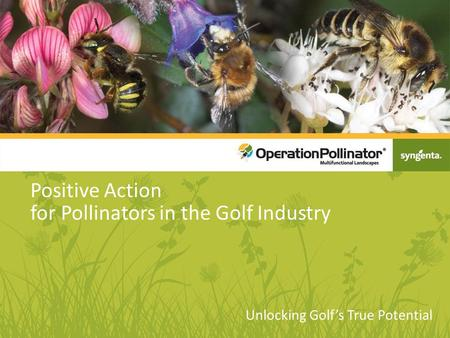 Positive Action for Pollinators in the Golf Industry Unlocking Golf's True Potential.