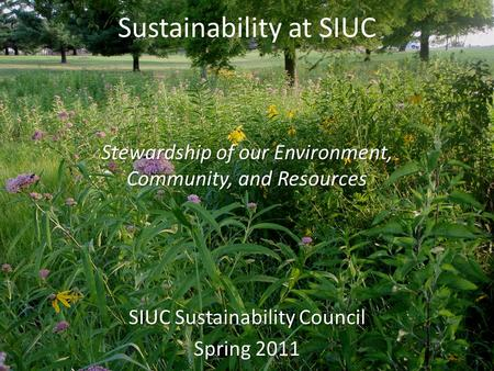 Sustainability at SIUC SIUC Sustainability Council Spring 2011 Stewardship of our Environment, Community, and Resources.