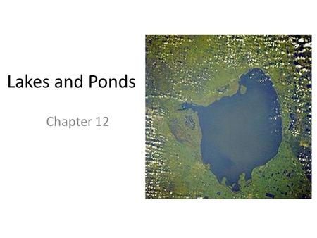 Lakes and Ponds Chapter 12. Conditions in Lakes and Ponds Cons: oxygen is limited the deeper you go, the darker it gets Pros: lack of water not a problem.