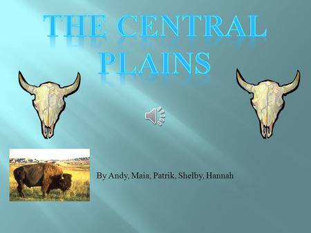 By Andy, Maia, Patrik, Shelby, Hannah The Land  The Central Plains region is a mixture of a land and a really grassy green land.  It is not too hot.