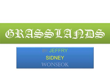 GRASSLANDS BY: JEFFRY SIDNEY WONSEOK BY: JEFFRY SIDNEY WONSEOK.