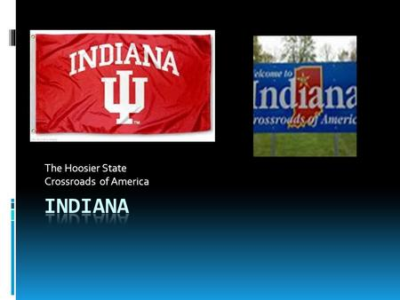 The Hoosier State Crossroads of America. HISTORY  Statehood: December  11, 1816  Indiana Flag: blue and gold with 19 stars  Seal : buffalo.